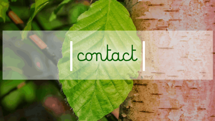 Le cabinet Contact Coordonnées Téléphone Email